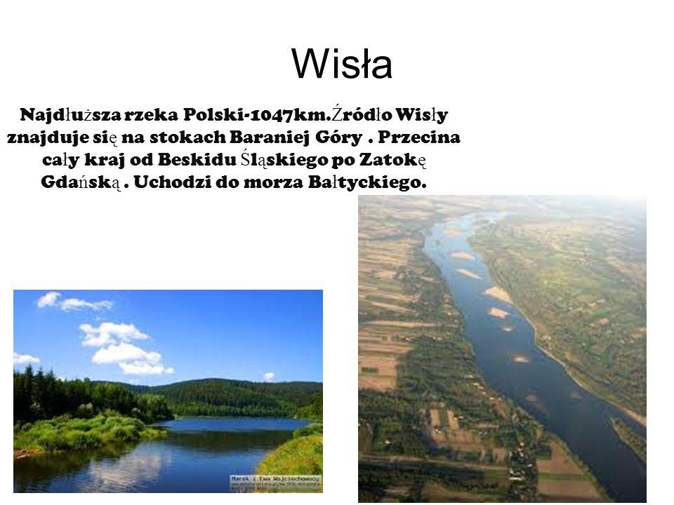 Wisła Najd ł u ż sza rzeka Polski-1047km.Ź ród ł o Wis ł y znajduje si ę na stokach Baraniej Góry.