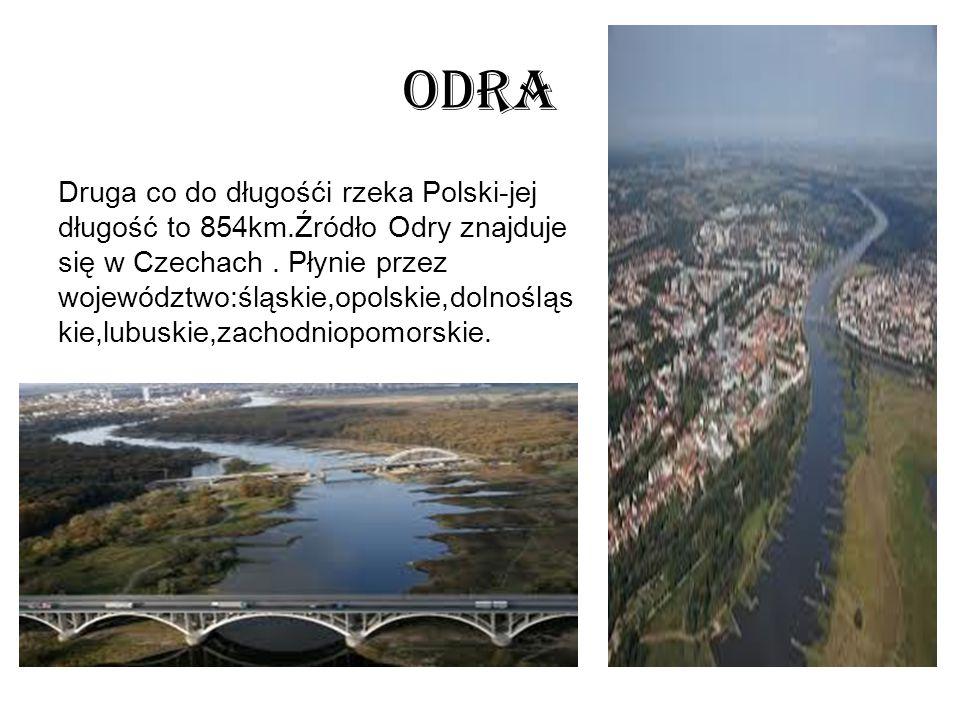 Odra Druga co do długośći rzeka Polski-jej długość to 854km.Źródło Odry znajduje się w Czechach.