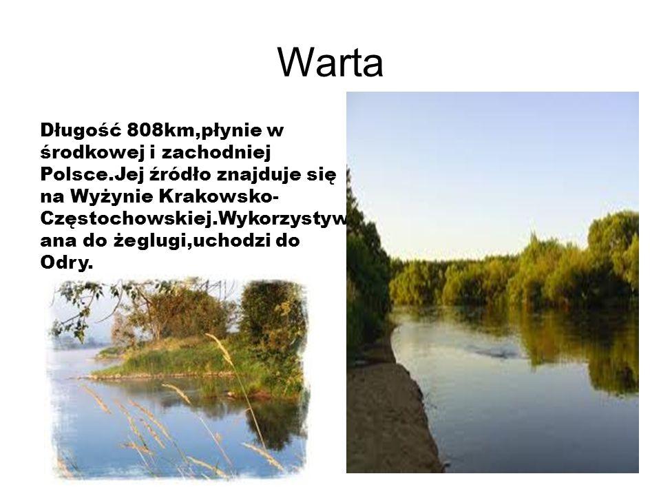 Warta Długość 808km,płynie w środkowej i zachodniej Polsce.Jej źródło znajduje się na Wyżynie Krakowsko- Częstochowskiej.Wykorzystyw ana do żeglugi,uchodzi do Odry.