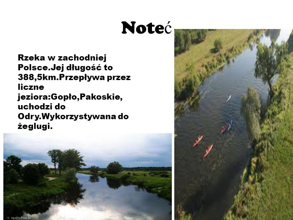 Note ć Rzeka w zachodniej Polsce.Jej długość to 388,5km.Przepływa przez liczne jeziora:Gopło,Pakoskie, uchodzi do Odry.Wykorzystywana do żeglugi.