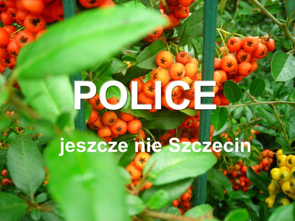 jeszcze nie Szczecin