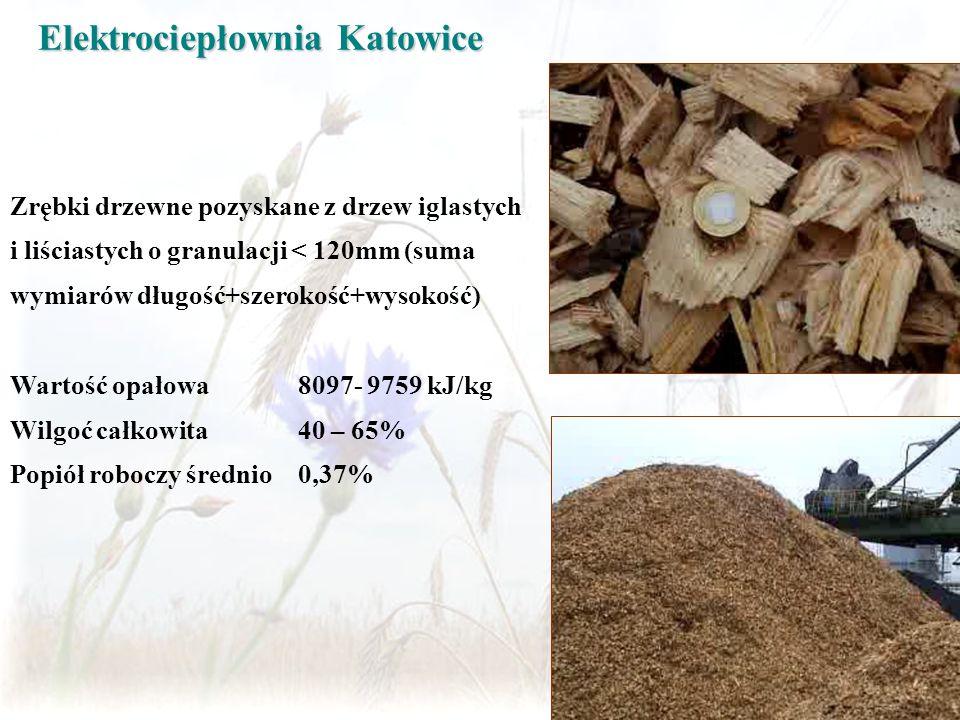 Zrębki drzewne pozyskane z drzew iglastych i liściastych o granulacji < 120mm (suma wymiarów długość+szerokość+wysokość) Wartość opałowa 8097- 9759 kJ