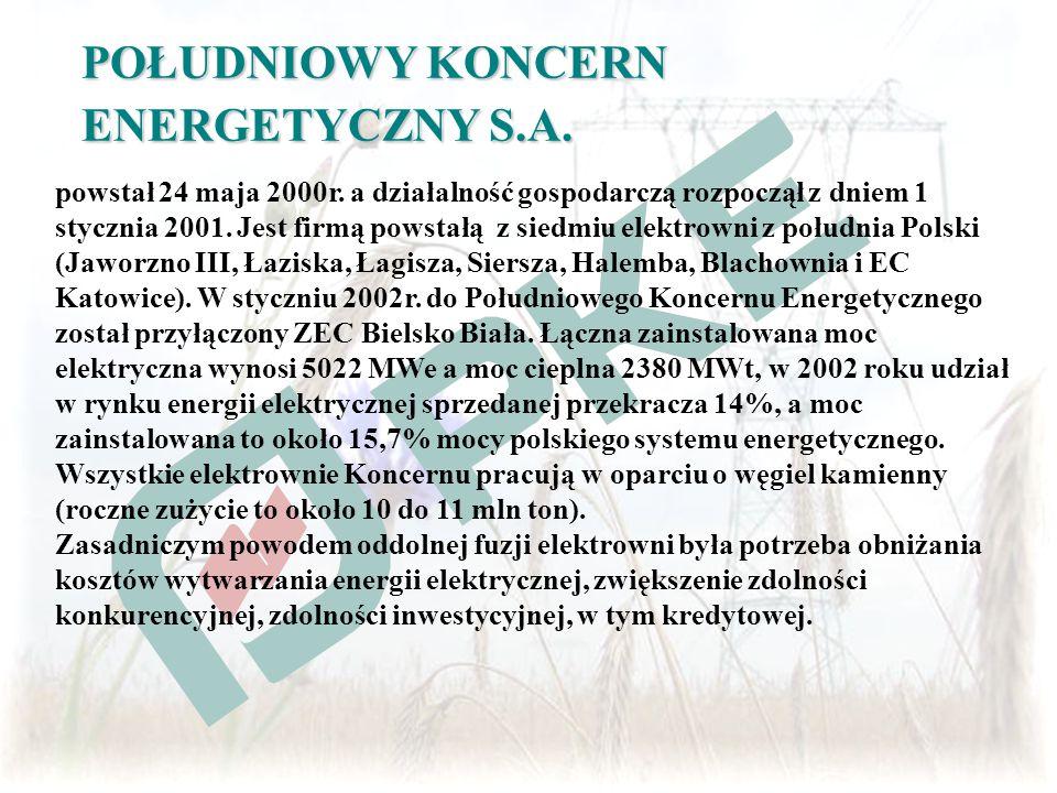 POŁUDNIOWY KONCERN ENERGETYCZNY S.A. powstał 24 maja 2000r. a działalność gospodarczą rozpoczął z dniem 1 stycznia 2001. Jest firmą powstałą z siedmiu