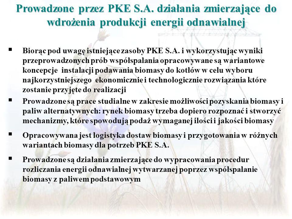Prowadzone przez PKE S.A. działania zmierzające do wdrożenia produkcji energii odnawialnej  Biorąc pod uwagę istniejące zasoby PKE S.A. i wykorzystuj