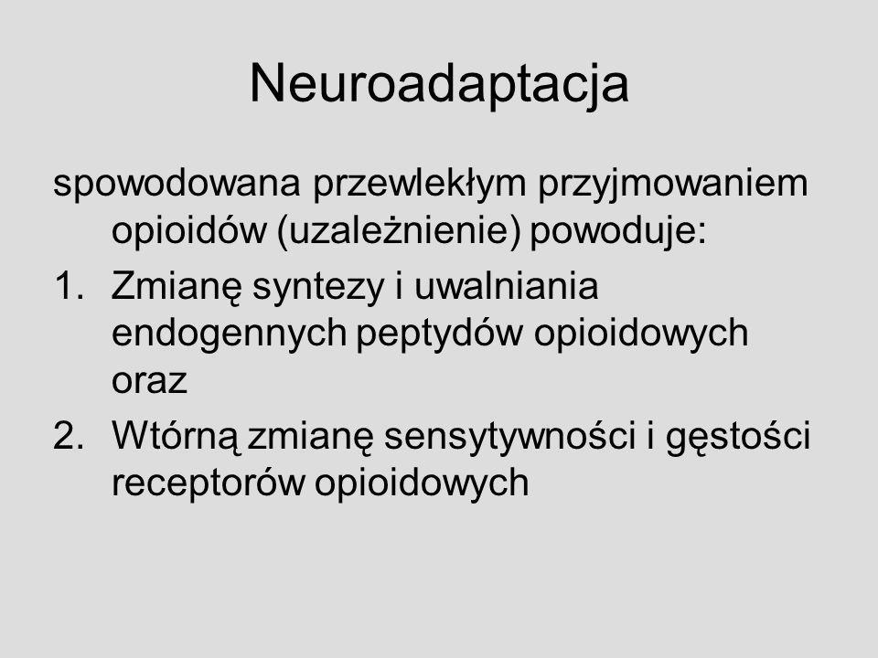 Neuroadaptacja spowodowana przewlekłym przyjmowaniem opioidów (uzależnienie) powoduje: 1.Zmianę syntezy i uwalniania endogennych peptydów opioidowych