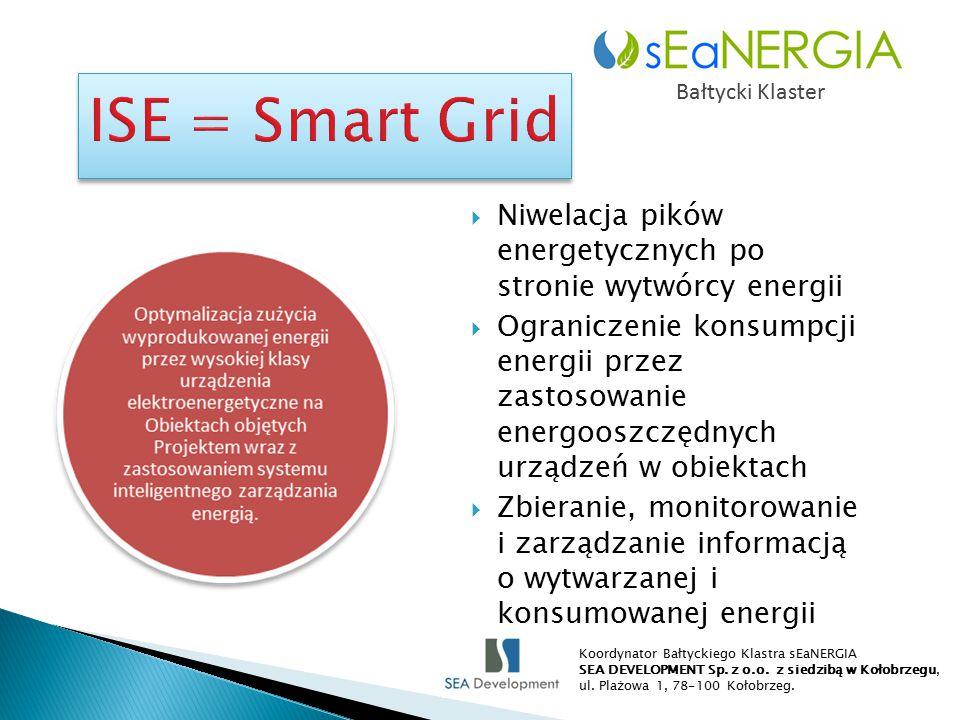 Bałtycki Klaster  Niwelacja pików energetycznych po stronie wytwórcy energii  Ograniczenie konsumpcji energii przez zastosowanie energooszczędnych urządzeń w obiektach  Zbieranie, monitorowanie i zarządzanie informacją o wytwarzanej i konsumowanej energii Koordynator Bałtyckiego Klastra sEaNERGIA SEA DEVELOPMENT Sp.