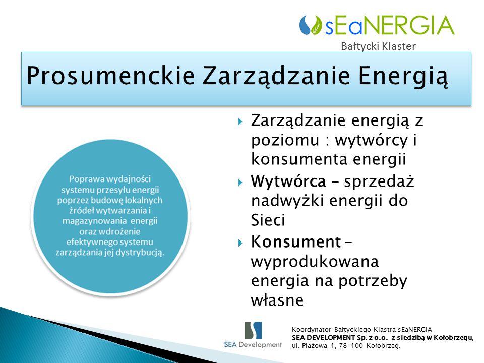  Zarządzanie energią z poziomu : wytwórcy i konsumenta energii  Wytwórca – sprzedaż nadwyżki energii do Sieci  Konsument – wyprodukowana energia na potrzeby własne Bałtycki Klaster Koordynator Bałtyckiego Klastra sEaNERGIA SEA DEVELOPMENT Sp.