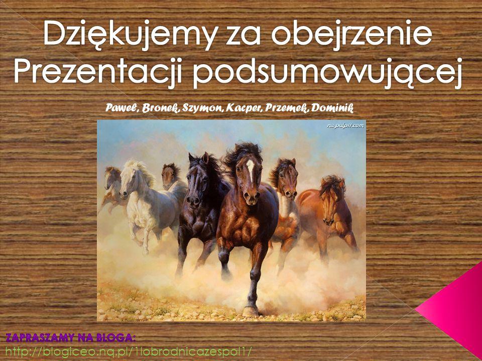 http://blogiceo.nq.pl/1lobrodnicazespol1/ Paweł, Bronek, Szymon, Kacper, Przemek, Dominik