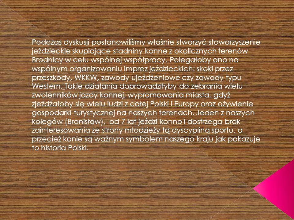 Podczas dyskusji postanowiliśmy właśnie stworzyć stowarzyszenie jeździeckie skupiające stadniny konne z okolicznych terenów Brodnicy w celu wspólnej współpracy.