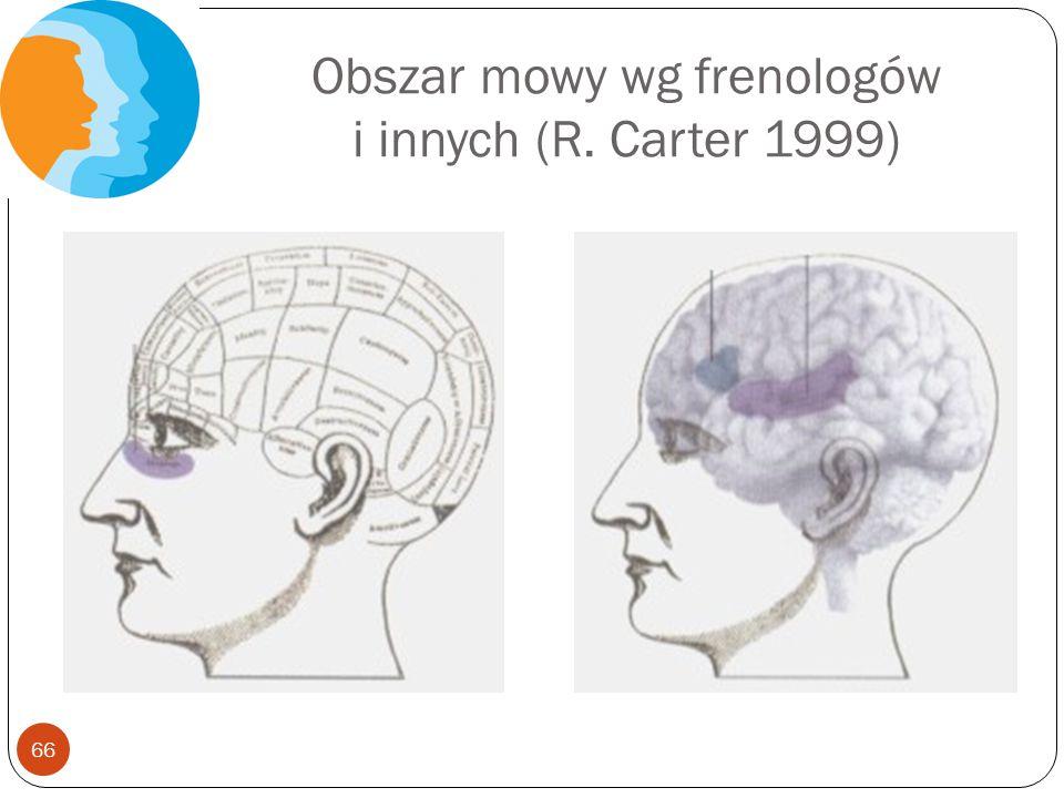 Obszar mowy wg frenologów i innych (R. Carter 1999) 66