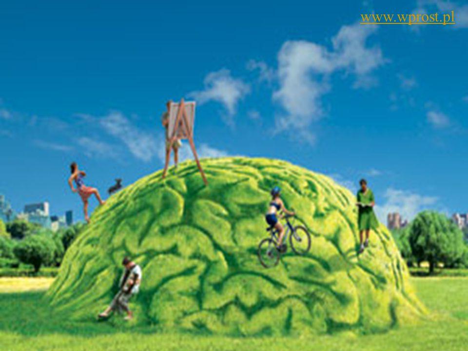 Ćwiczenia mózgu 73 www.wprost.pl