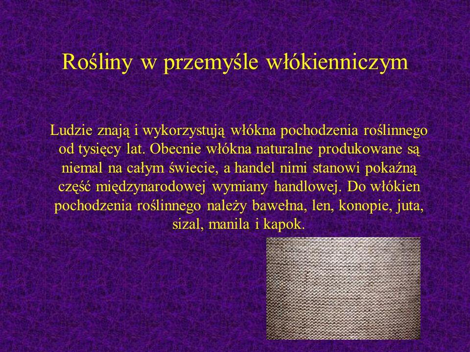 Rośliny w przemyśle włókienniczym Ludzie znają i wykorzystują włókna pochodzenia roślinnego od tysięcy lat. Obecnie włókna naturalne produkowane są ni