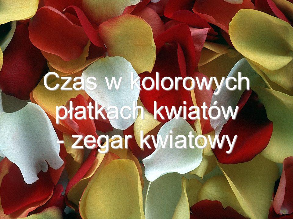 Grzybień biały - Grzybień biały - 6 00 Nymphaea alba Działanie lecznicze: wyciągi ze świeżych kwiatów są środkiem nasercowym i uspakajającym.