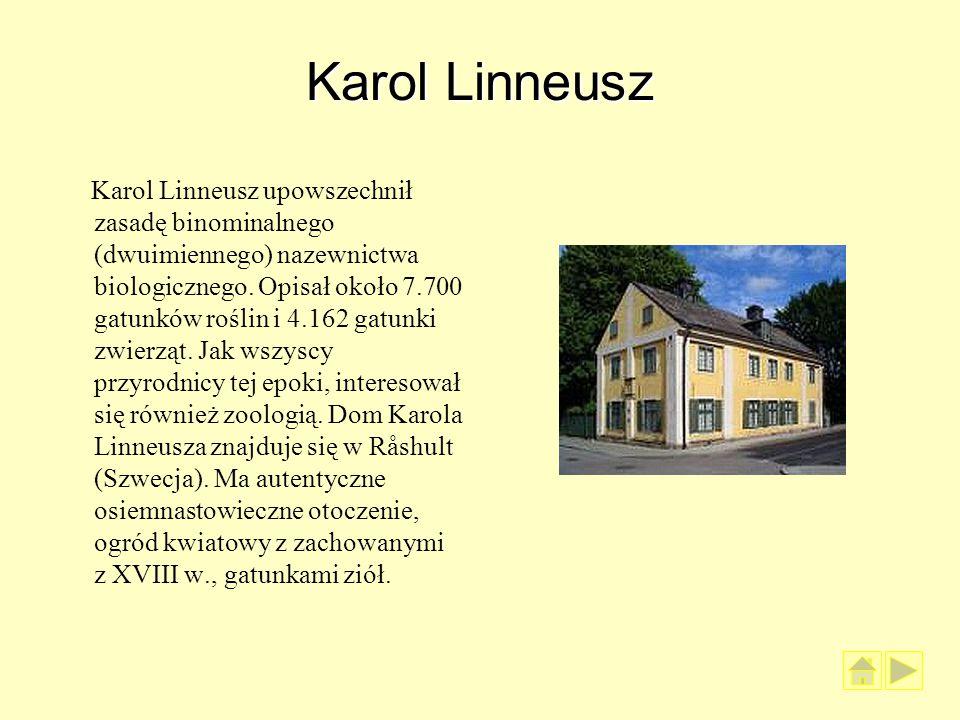 Karol Linneusz Karol Linneusz upowszechnił zasadę binominalnego (dwuimiennego) nazewnictwa biologicznego. Opisał około 7.700 gatunków roślin i 4.162 g