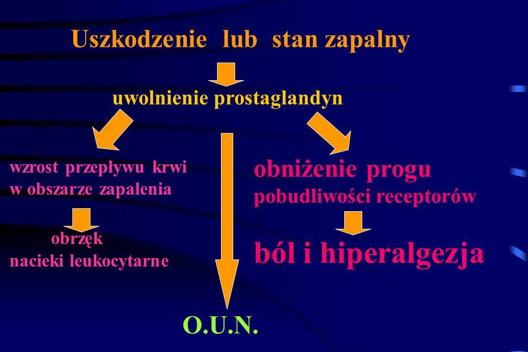 Efekt terapeutyczny jest związany z obniżeniem poziomu Prostaglandyn - szczególnie PGE 2 Mechanizm działania NLPZ Polega na hamowaniu funkcji enzymu –