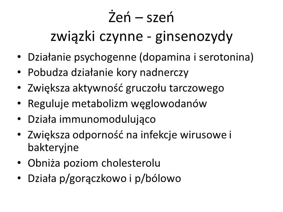 Żeń – szeń związki czynne - ginsenozydy Działanie psychogenne (dopamina i serotonina) Pobudza działanie kory nadnerczy Zwiększa aktywność gruczołu tar