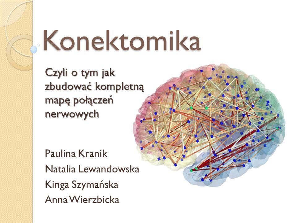 Konektomika Paulina Kranik Natalia Lewandowska Kinga Szymańska Anna Wierzbicka Czyli o tym jak zbudować kompletną mapę połączeń nerwowych