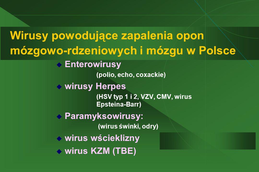Wirusy powodujące zapalenia opon mózgowo-rdzeniowych i mózgu w Polsce  Enterowirusy  (polio, echo, coxackie)  wirusy Herpes  (HSV typ 1 i 2, VZV,