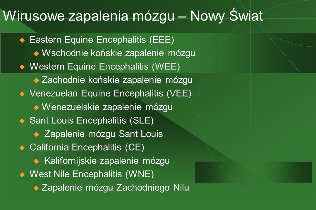 Wirusowe zapalenia mózgu – Nowy Świat  Eastern Equine Encephalitis (EEE) u Wschodnie końskie zapalenie mózgu  Western Equine Encephalitis (WEE) u Za