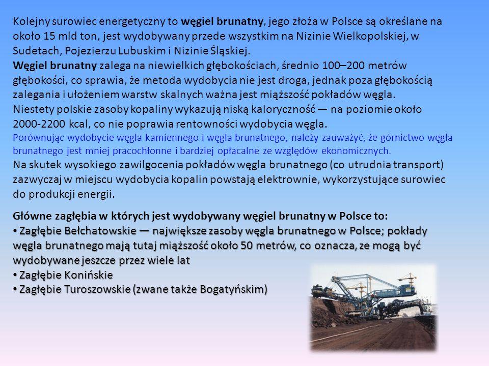 Kolejny surowiec energetyczny to węgiel brunatny, jego złoża w Polsce są określane na około 15 mld ton, jest wydobywany przede wszystkim na Nizinie Wi