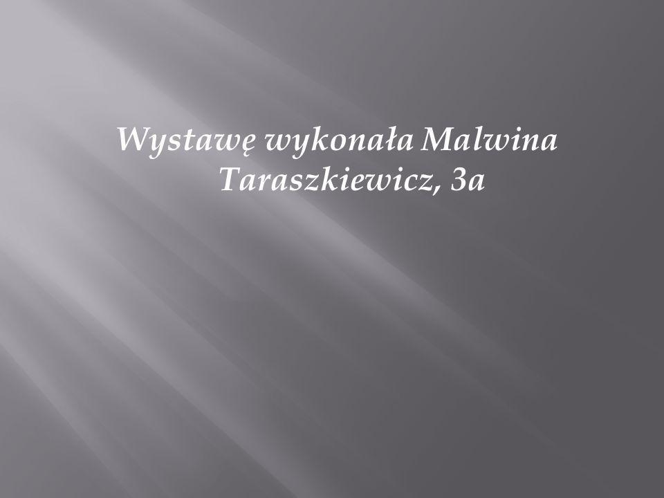Wystawę wykonała Malwina Taraszkiewicz, 3a