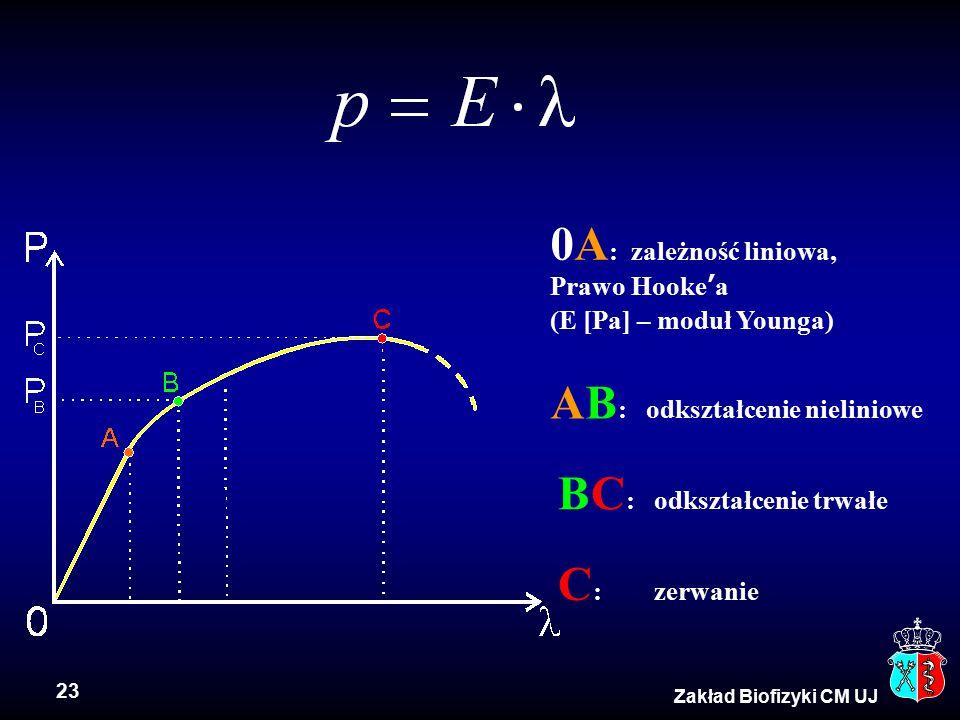 23 Zakład Biofizyki CM UJ 0A : zależność liniowa, Prawo Hooke ' a (E [Pa] – moduł Younga) AB : odkształcenie nieliniowe BC : odkształcenie trwałe C :