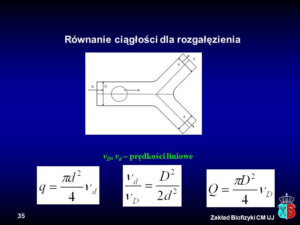 35 Zakład Biofizyki CM UJ Równanie ciągłości dla rozgałęzienia v D, v d – prędkości liniowe