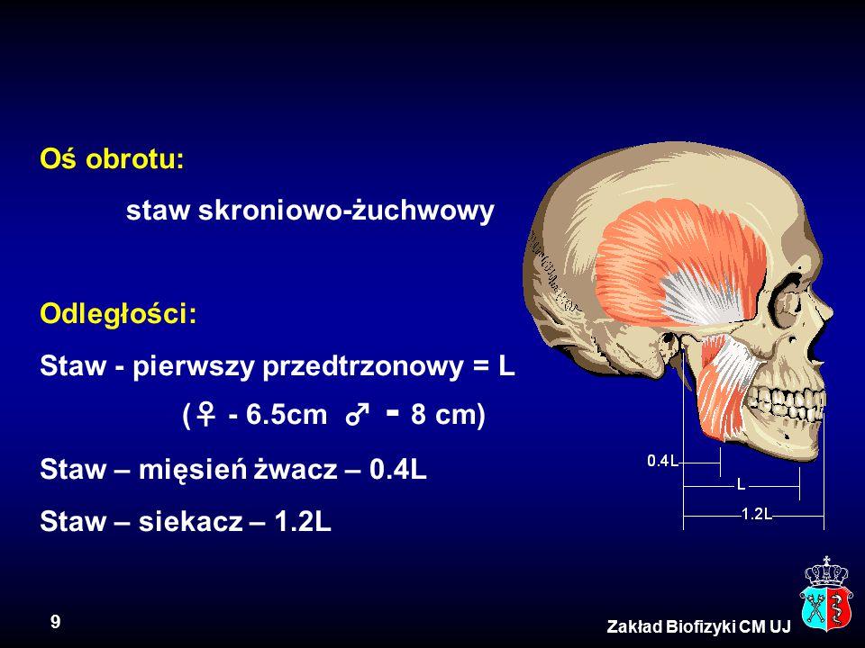 9 Zakład Biofizyki CM UJ Oś obrotu: staw skroniowo-żuchwowy Odległości: Staw - pierwszy przedtrzonowy = L (♀ - 6.5cm ♂ - 8 cm) Staw – mięsień żwacz –