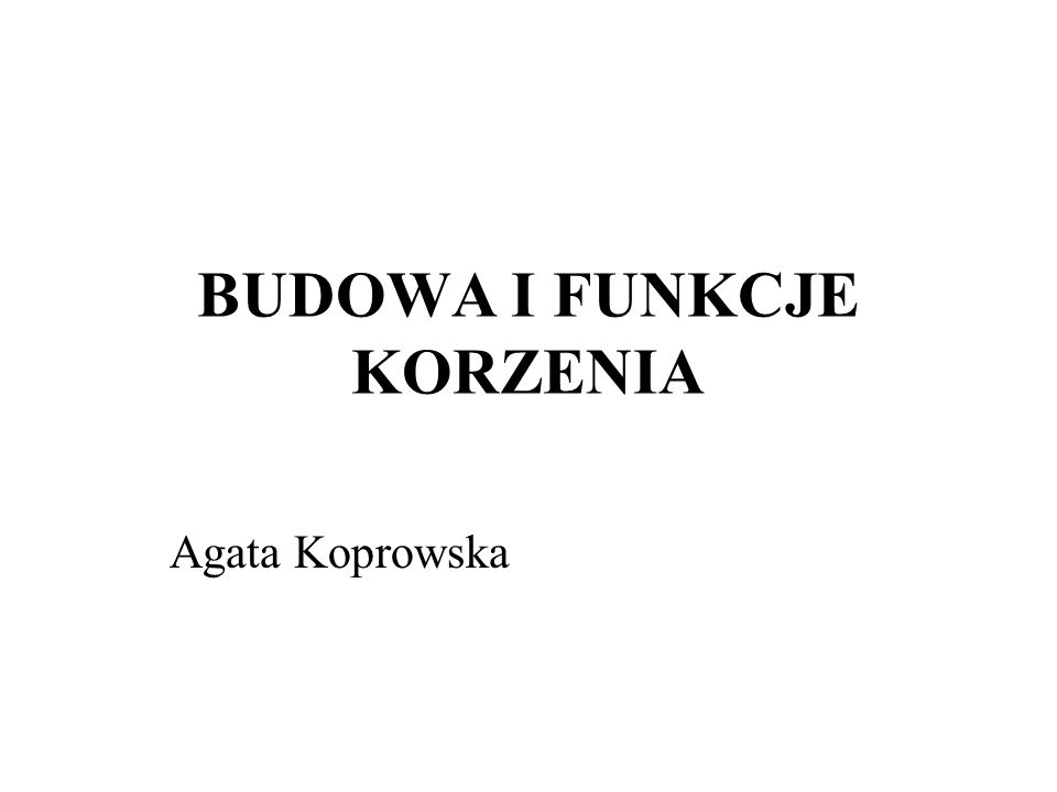 BUDOWA I FUNKCJE KORZENIA Agata Koprowska