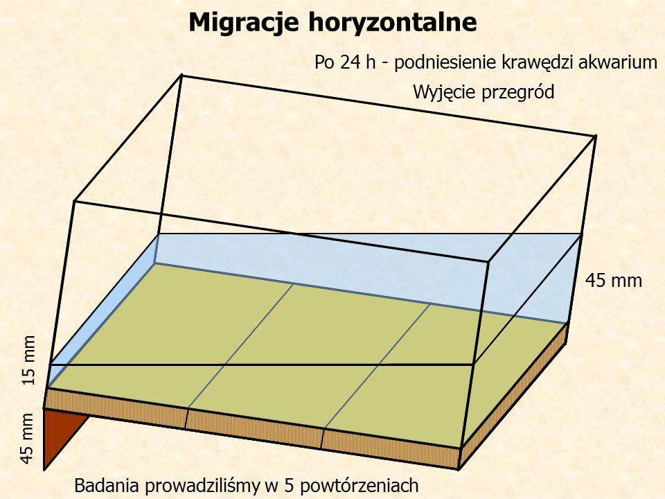 Wyjęcie przegród Migracje horyzontalne Po 24 h - podniesienie krawędzi akwarium 45 mm 15 mm Badania prowadziliśmy w 5 powtórzeniach