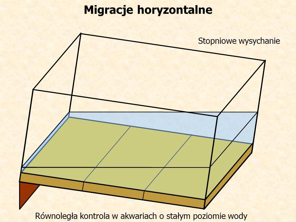 Stopniowe wysychanie Migracje horyzontalne Równoległa kontrola w akwariach o stałym poziomie wody