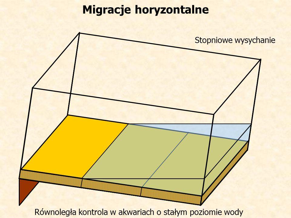 Migracje horyzontalne Stopniowe wysychanie Równoległa kontrola w akwariach o stałym poziomie wody