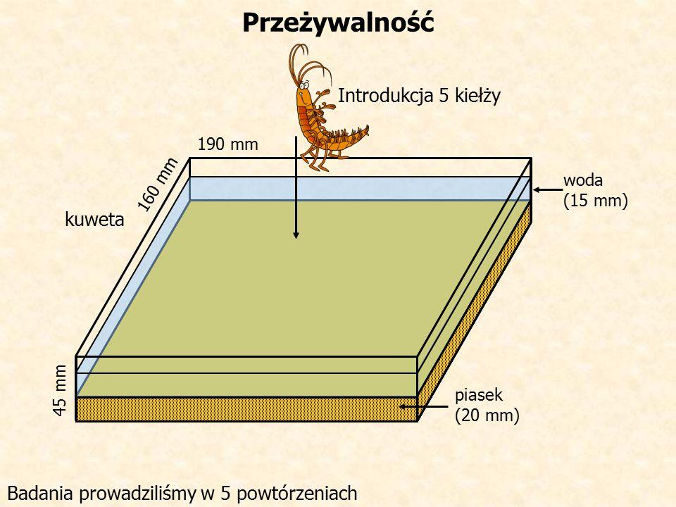 Przeżywalność 190 mm 160 mm 45 mm piasek (20 mm) woda (15 mm) Introdukcja 5 kiełży kuweta Badania prowadziliśmy w 5 powtórzeniach