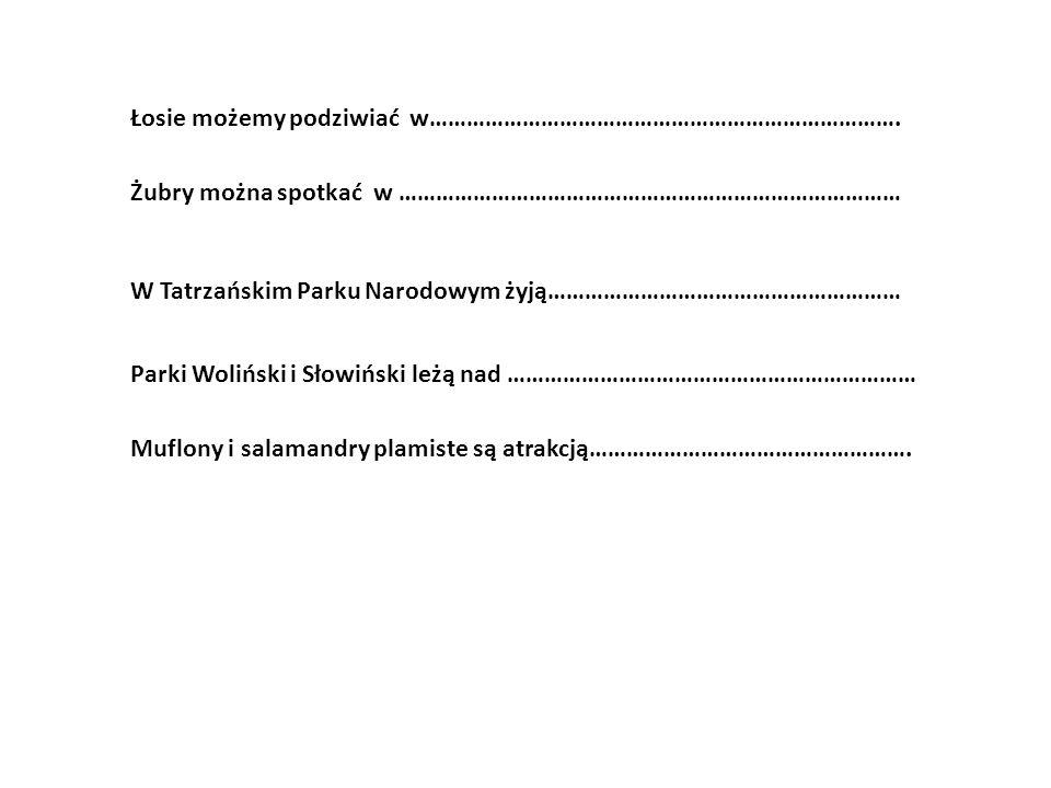 Parki Woliński i Słowiński leżą nad ………………………………………………………… Żubry można spotkać w ……………………………………………………………………… W Tatrzańskim Parku Narodowym żyją………………………………………………… Łosie możemy podziwiać w………………………………………………………………….