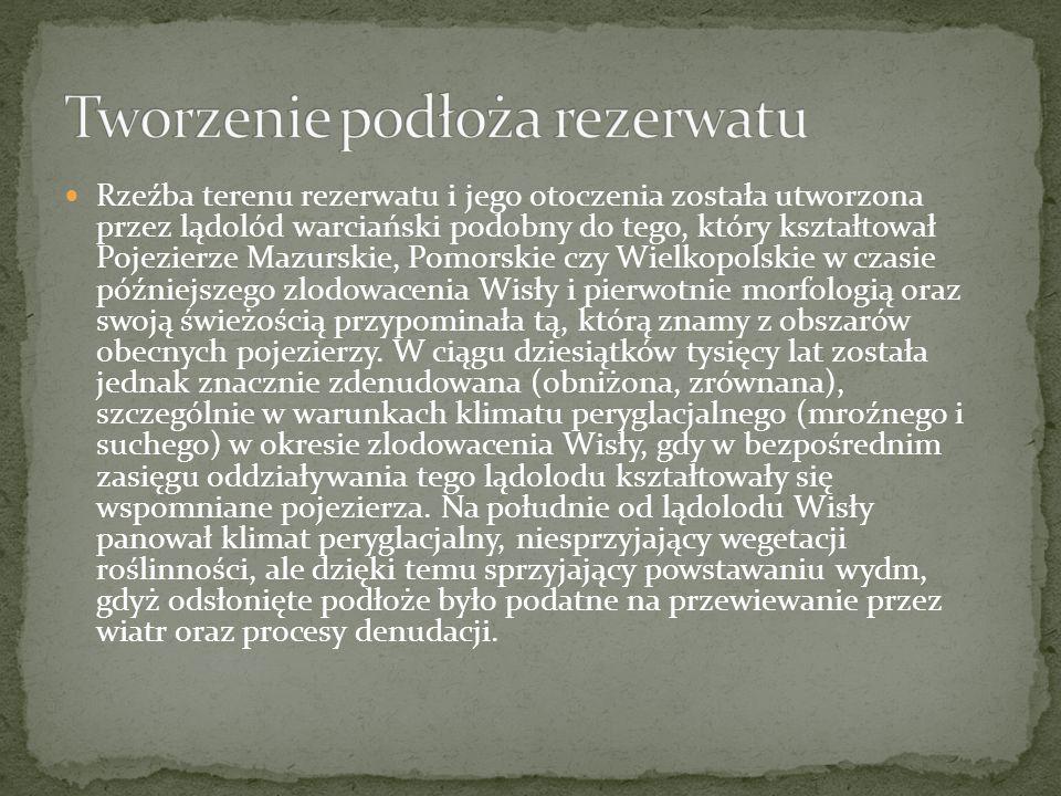 Rzeźba terenu rezerwatu i jego otoczenia została utworzona przez lądolód warciański podobny do tego, który kształtował Pojezierze Mazurskie, Pomorskie czy Wielkopolskie w czasie późniejszego zlodowacenia Wisły i pierwotnie morfologią oraz swoją świeżością przypominała tą, którą znamy z obszarów obecnych pojezierzy.
