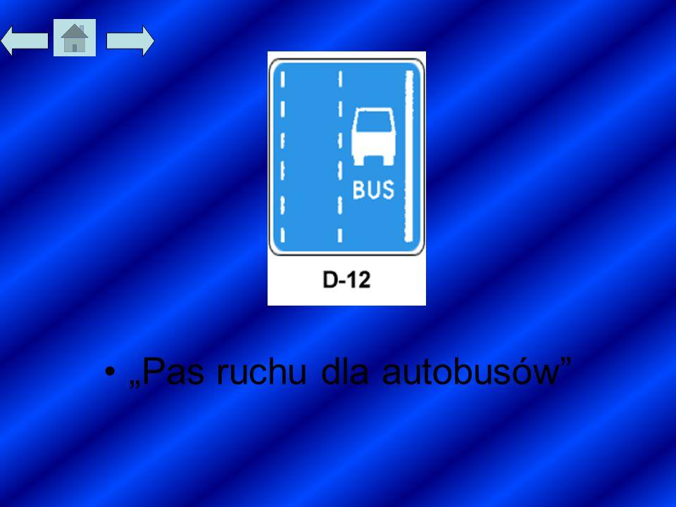 """""""Pas ruchu dla autobusów"""""""