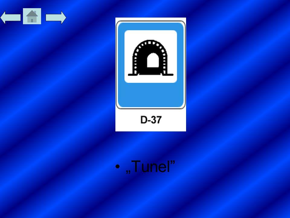 """""""Tunel"""""""