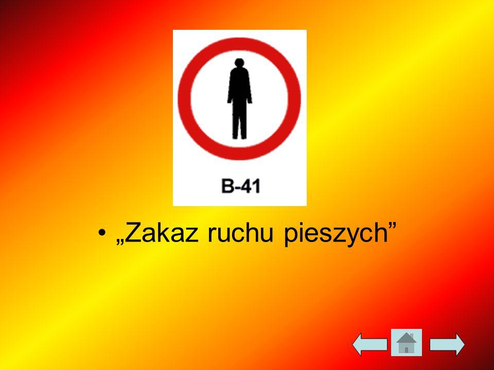 """""""Zakaz ruchu pieszych"""""""
