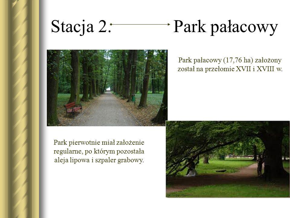 Stacja 2. Park pałacowy Park pałacowy (17,76 ha) założony został na przełomie XVII i XVIII w. Park pierwotnie miał założenie regularne, po którym pozo