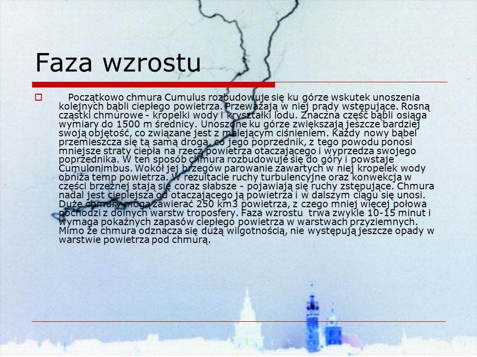 Koniec bibliografia: Internet: zjawiskaprzyrodnicze.webpark.pl www.ceper.com.pl abcswiata.w.interia.pl lo21.szkoly.lodz.pl www.geografia.com.pl meteo.ids.pl www.burze.republika.pl