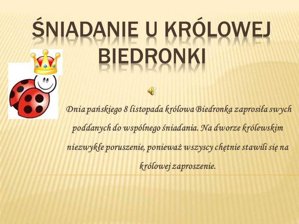 Dnia pańskiego 8 listopada królowa Biedronka zaprosiła swych poddanych do wspólnego śniadania.