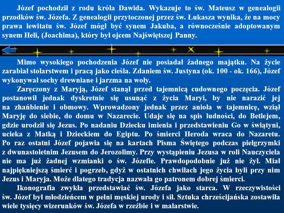 Józef pochodził z rodu króla Dawida.Wykazuje to św.