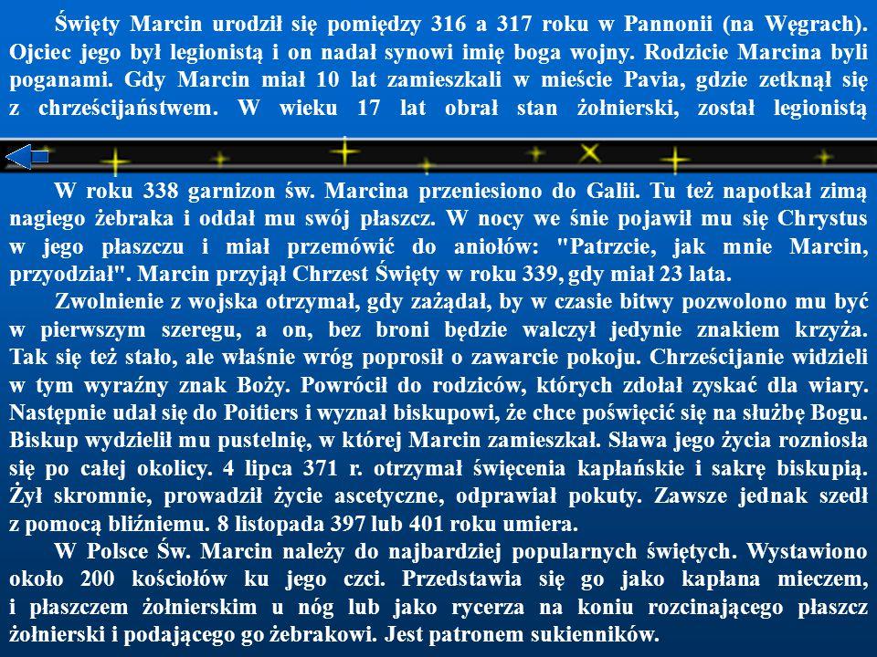 Święty Marcin urodził się pomiędzy 316 a 317 roku w Pannonii (na Węgrach).