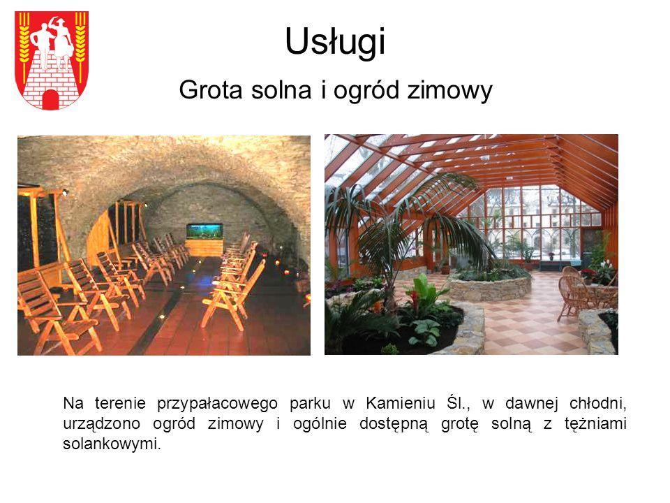 Usługi Grota solna i ogród zimowy Na terenie przypałacowego parku w Kamieniu Śl., w dawnej chłodni, urządzono ogród zimowy i ogólnie dostępną grotę solną z tężniami solankowymi.