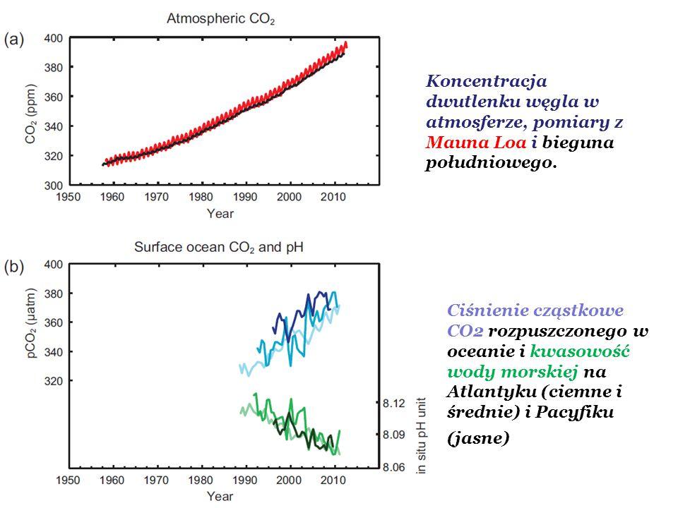 Koncentracja dwutlenku węgla w atmosferze, pomiary z Mauna Loa i bieguna południowego. Ciśnienie cząstkowe CO2 rozpuszczonego w oceanie i kwasowość wo