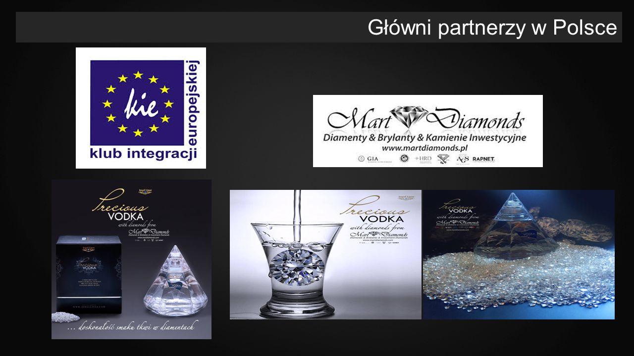 Główni partnerzy w Polsce