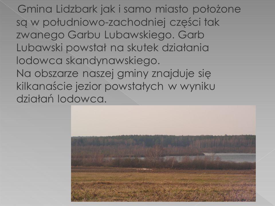 Gmina Lidzbark jak i samo miasto położone są w południowo-zachodniej części tak zwanego Garbu Lubawskiego.