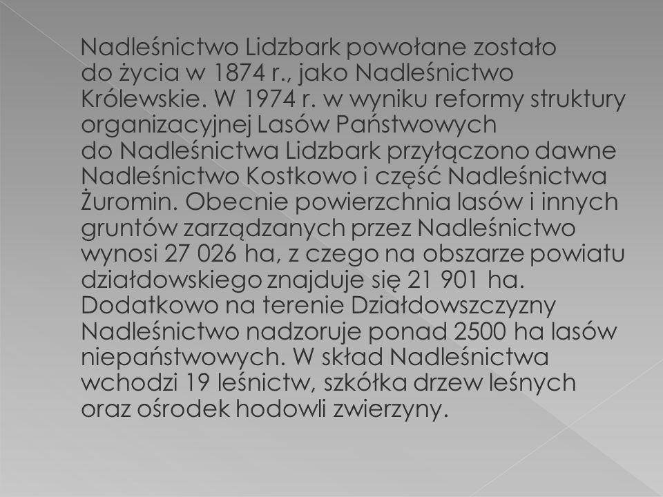 Nadleśnictwo Lidzbark powołane zostało do życia w 1874 r., jako Nadleśnictwo Królewskie.