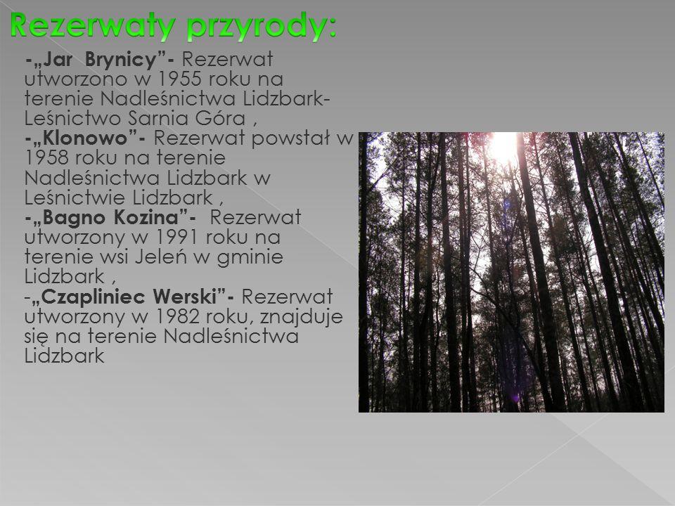 """-""""Jar Brynicy - Rezerwat utworzono w 1955 roku na terenie Nadleśnictwa Lidzbark- Leśnictwo Sarnia Góra, -""""Klonowo - Rezerwat powstał w 1958 roku na terenie Nadleśnictwa Lidzbark w Leśnictwie Lidzbark, -""""Bagno Kozina - Rezerwat utworzony w 1991 roku na terenie wsi Jeleń w gminie Lidzbark, - """"Czapliniec Werski - Rezerwat utworzony w 1982 roku, znajduje się na terenie Nadleśnictwa Lidzbark"""