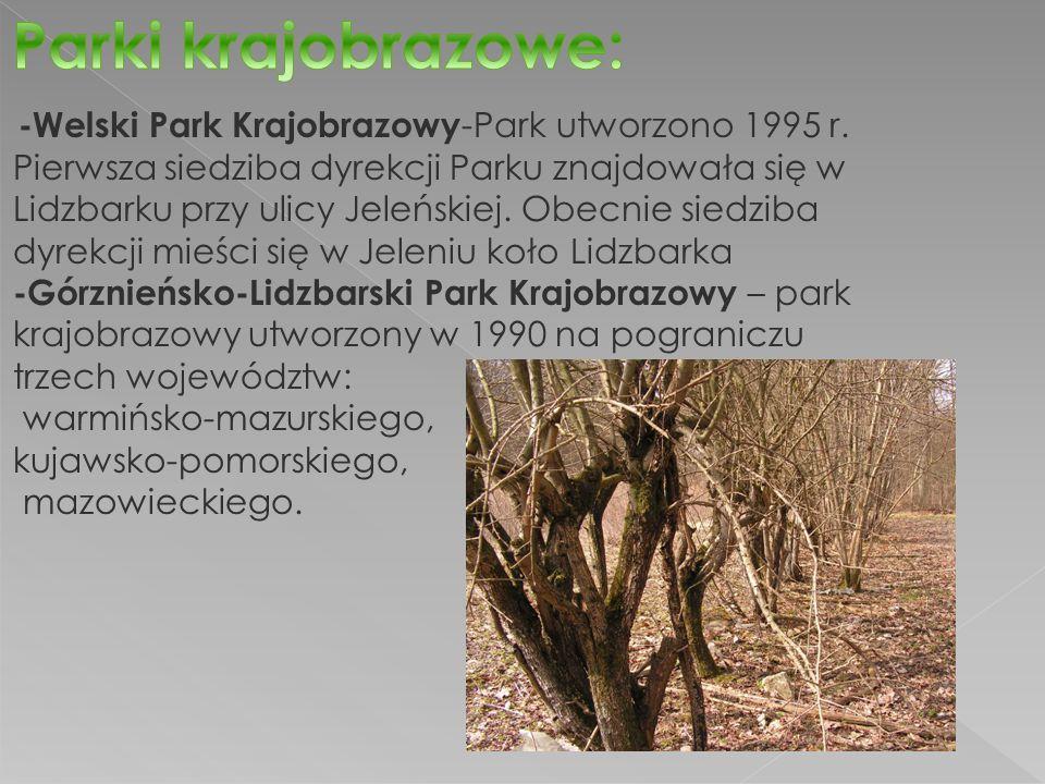 -Welski Park Krajobrazowy -Park utworzono 1995 r.